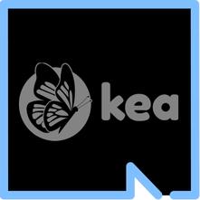 Kea Medicals logo